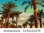 sunset on the shore of the red... | Shutterstock . vector #1152121079