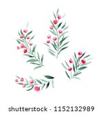 twigs with red flowers ... | Shutterstock . vector #1152132989