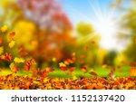 fall leaf in sunshine background | Shutterstock . vector #1152137420
