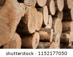 lot of stacked wood logs... | Shutterstock . vector #1152177050