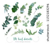 greenery leaves vector big... | Shutterstock .eps vector #1152183296