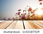 wood floors and natural... | Shutterstock . vector #1152187529
