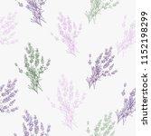 lavander color outline floral... | Shutterstock .eps vector #1152198299