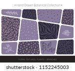 botanical hand drawn vector ... | Shutterstock .eps vector #1152245003