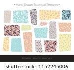 original botanic textures. hand ... | Shutterstock .eps vector #1152245006