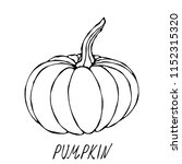 orange pumpkin. autumn or fall... | Shutterstock .eps vector #1152315320