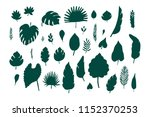 tropical palm leaves  jungle... | Shutterstock .eps vector #1152370253