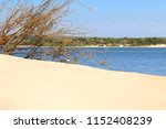 a baby gull in the sand  in the ... | Shutterstock . vector #1152408239