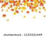 beautiful maple leaves... | Shutterstock .eps vector #1152531449