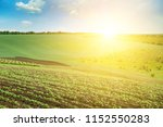 green field and blue sky with... | Shutterstock . vector #1152550283
