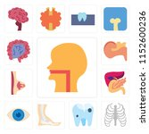 set of 13 simple editable icons ... | Shutterstock .eps vector #1152600236