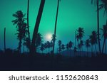 tropical palm tree with sun... | Shutterstock . vector #1152620843