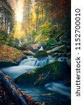 autumn beauty. beautiful wild... | Shutterstock . vector #1152700010