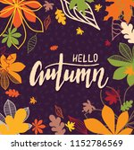 background with multicolor... | Shutterstock .eps vector #1152786569