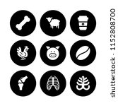 roasted icon. 9 roasted set... | Shutterstock .eps vector #1152808700