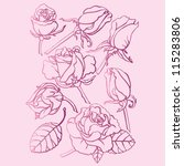 roses pink drawing | Shutterstock .eps vector #115283806