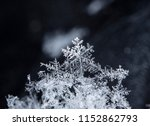natural snowflakes on snow | Shutterstock . vector #1152862793