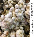 close up of garlic bunch for... | Shutterstock . vector #1152867290
