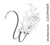 vector hand drawn flowered w... | Shutterstock .eps vector #1152994409