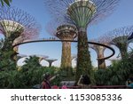 people on the supertree grove ... | Shutterstock . vector #1153085336