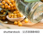 sea buckthorn oil and berries... | Shutterstock . vector #1153088483