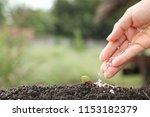 hand of a farmer giving... | Shutterstock . vector #1153182379