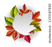 autumn background . vector... | Shutterstock .eps vector #1153187830