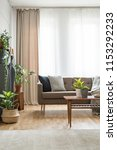 real photo of a sofa with...   Shutterstock . vector #1153292233