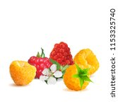fresh  nutritious and tasty... | Shutterstock .eps vector #1153325740
