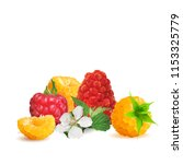 fresh  nutritious and tasty... | Shutterstock .eps vector #1153325779