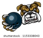 a bulldog dog angry animal... | Shutterstock .eps vector #1153338043