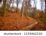 late autumn forest. red leaves... | Shutterstock . vector #1153462210