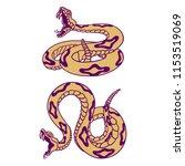 Set Of Rattlesnakes. Hand Drawn ...