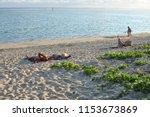 saline les bains  white coral... | Shutterstock . vector #1153673869