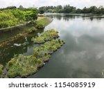 river  tropics  punggol...   Shutterstock . vector #1154085919