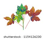 leaves. watercolor template.... | Shutterstock . vector #1154126230