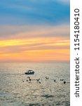 puerto vallarta  mexico   march ... | Shutterstock . vector #1154180410