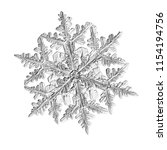 snowflake isolated on white... | Shutterstock . vector #1154194756