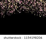 pink gold confetti circle...   Shutterstock .eps vector #1154198206