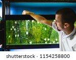 male worker in aquarium shop... | Shutterstock . vector #1154258800