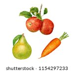 watercolor red apples with... | Shutterstock . vector #1154297233