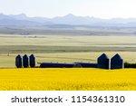 grain silo and canola fields in ... | Shutterstock . vector #1154361310