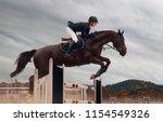 Equestrian Sport Rider Bay Horse - Fine Art prints
