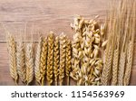 ears of wheat  rye  barley and... | Shutterstock . vector #1154563969