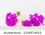 primrose essential oil in a... | Shutterstock . vector #1154574013