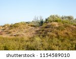 travel to natural places.... | Shutterstock . vector #1154589010