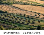 panoramic view of olive groves... | Shutterstock . vector #1154646496