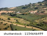 panoramic view of olive groves... | Shutterstock . vector #1154646499