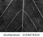 dark black and white leaf... | Shutterstock . vector #1154676523