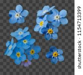 blue forget me not spring... | Shutterstock .eps vector #1154713399